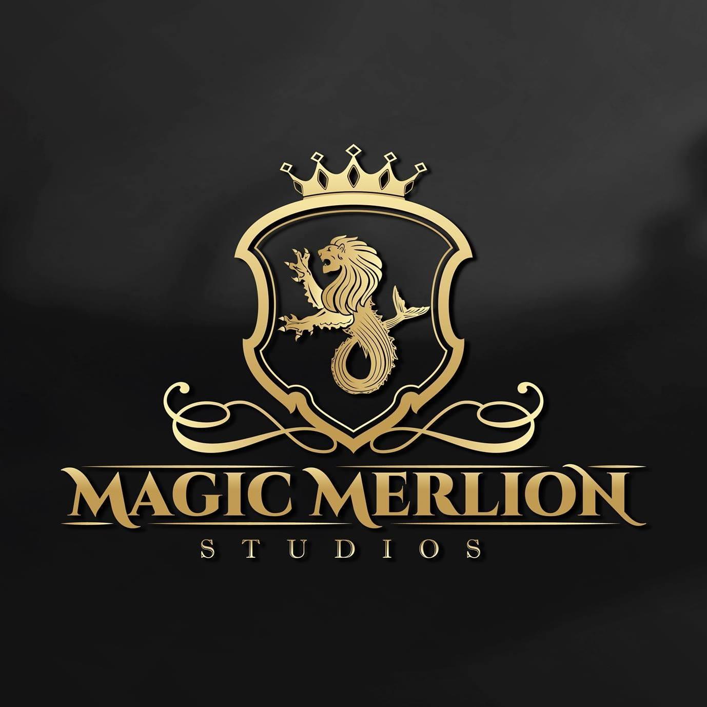 Design & Analytics 27907488_1583216865132367_6915918224638629563_o Magic Merlion Studios